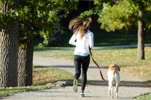 犬と一緒にランニング!リードはどんなものを選ぶのがいい?