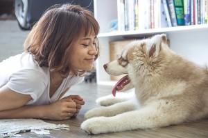 犬が足を引きずる時の原因は?すぐにするべき対処法も!
