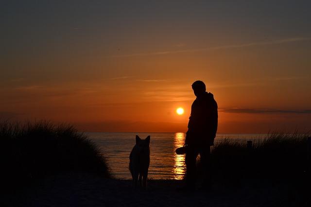 sunset-808805_640