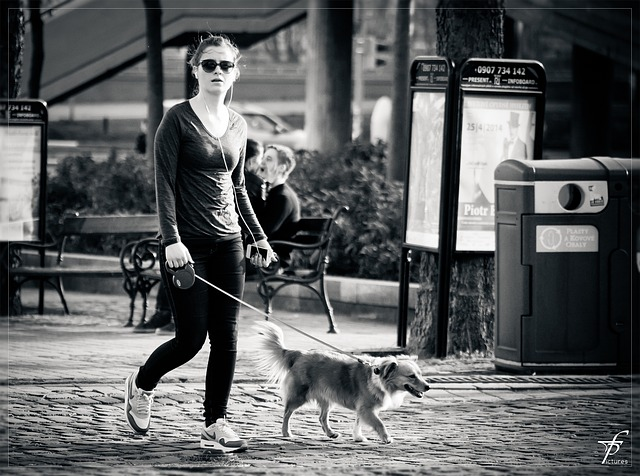 walking-the-dog-293311_640