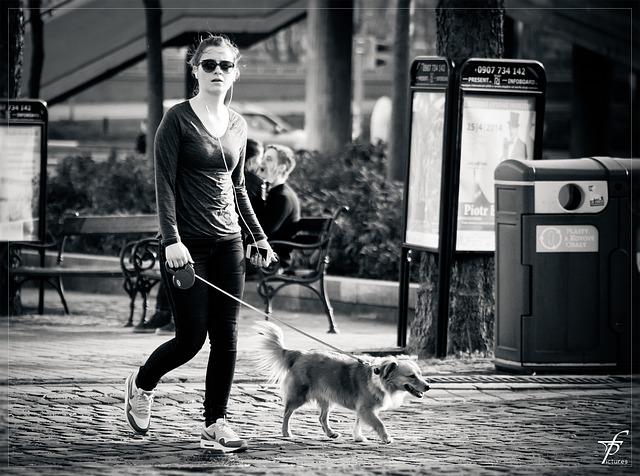 walking-the-dog-293311_640