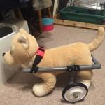 犬の車椅子の作り方!DIY初心者でも手作りはできるの?